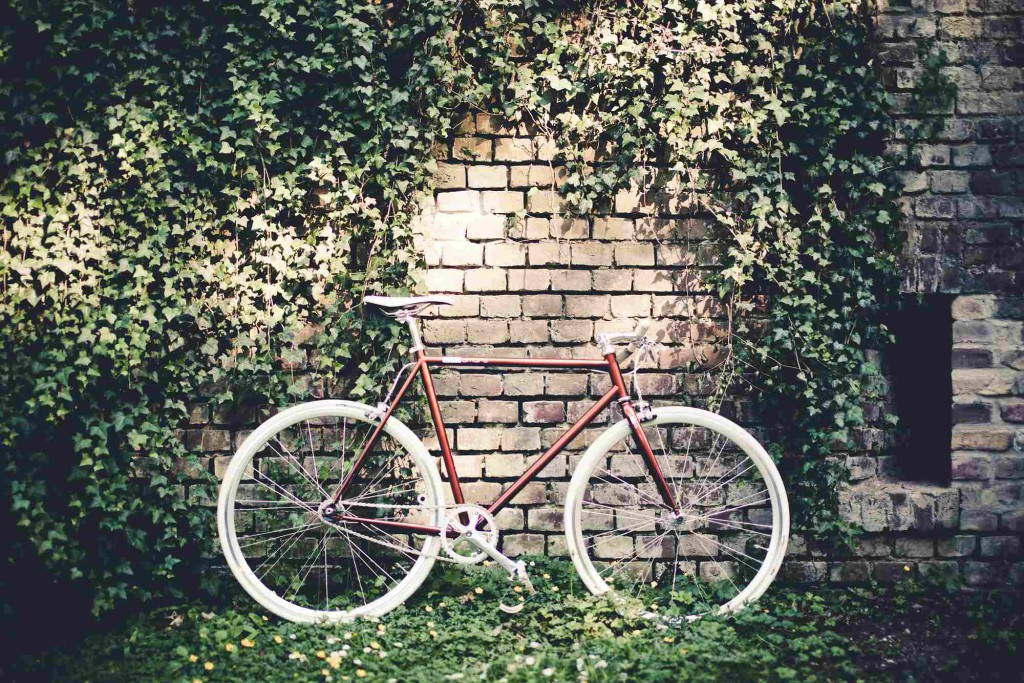 Single Speed Bike fuel brown