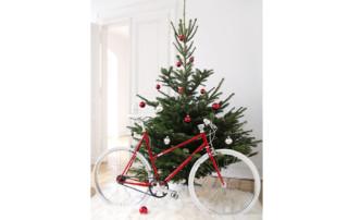 Woman Urban Bike Christmas